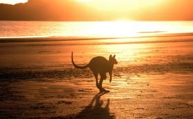 australia plaža